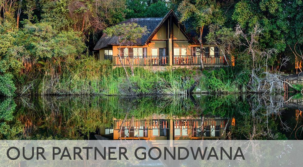 Our partner Gondwana